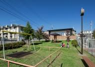 公園と連なる家