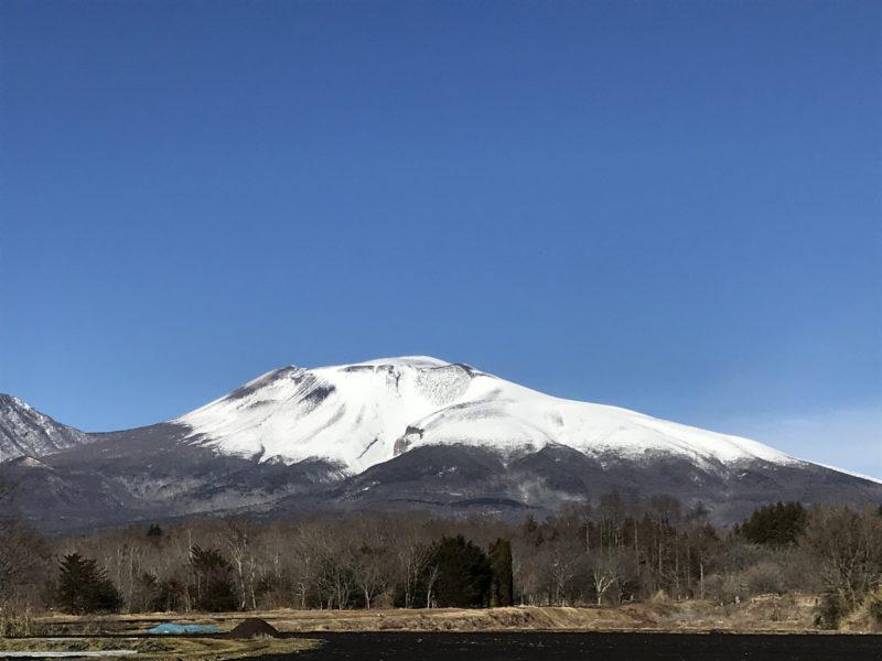 軽井沢の別荘「大きな木かげ」