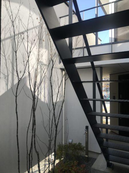 中庭(玄関ポーチ 〜 外階段 〜 2階テラス)松本市 コートハウス