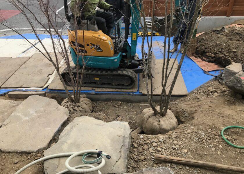 植栽工事「東西にひろがる家」