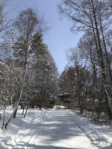 蓼科高原 林建築設計室のアトリエ