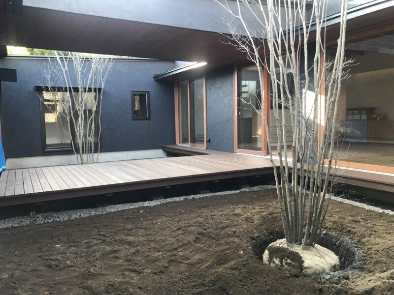 中庭の植栽 緑をかこむ家 松本市