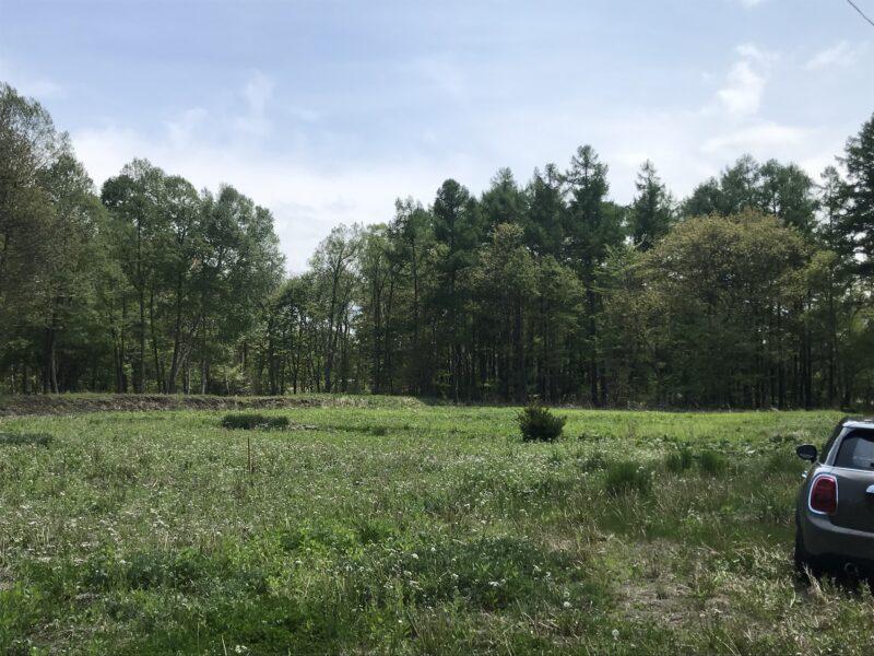 原村の敷地