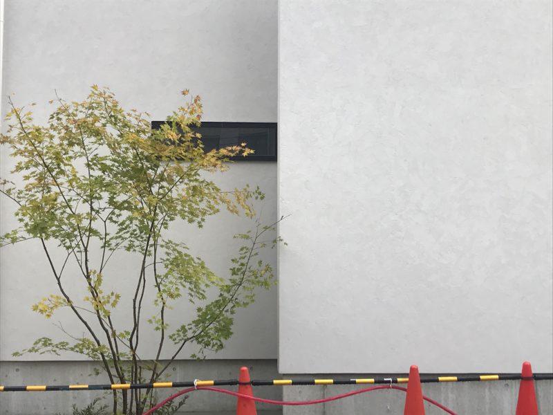 街角のコートハウス 松本市