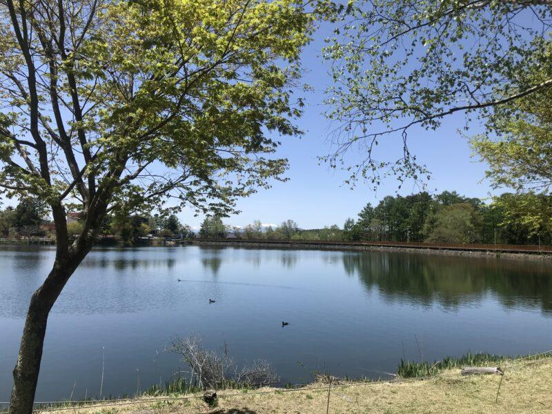 蓼科湖 2021.5.10